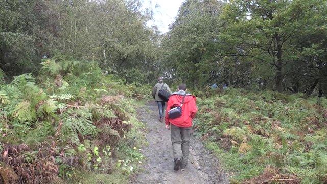 Smithy Woods under threat