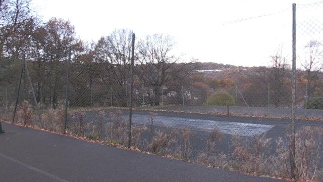 Greystones residents seek Bingham Park improvements