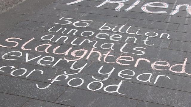 Vegan graffiti on city centre walkway